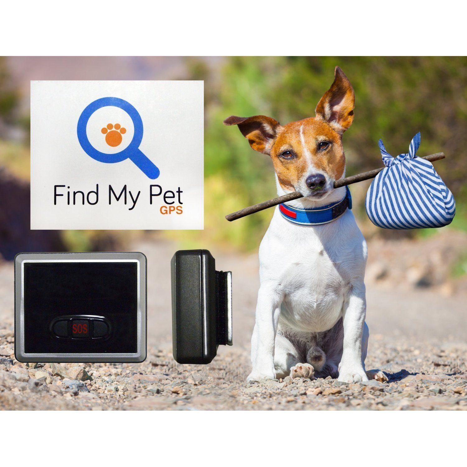 10 BEST GPS TRACKERS FOR PETS